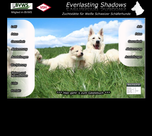 everlasting-shadows.png